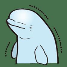 cute beluga whale sticker #15886541