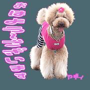 สติ๊กเกอร์ไลน์ MAsama's dog Sticker