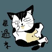 สติ๊กเกอร์ไลน์ Sesame cat dating time