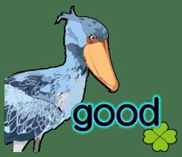 Sluggish bird Shoebill sticker #15929962