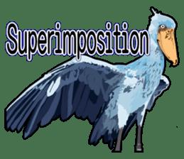 Sluggish bird Shoebill sticker #15929978