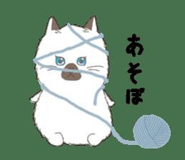 ultra cat sticker #15931820