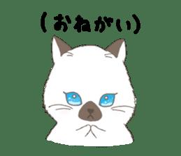 ultra cat sticker #15931825