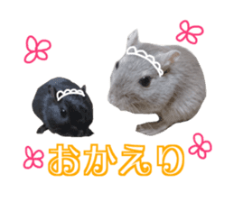 Hamster. No, this is jird's. sticker #15933515