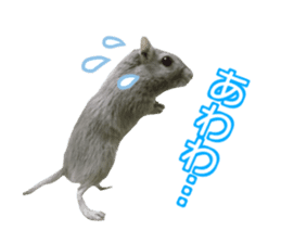 Hamster. No, this is jird's. sticker #15933520