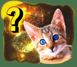 Cat Photo Stickers 08 sticker #15937032