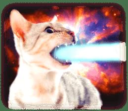 Cat Photo Stickers 08 sticker #15937050