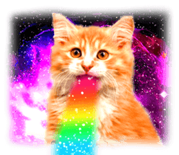 Cat Photo Stickers 08 sticker #15937079