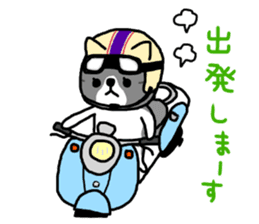 A cat sticker has been released 2 sticker #15945471