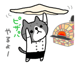 A cat sticker has been released 2 sticker #15945500