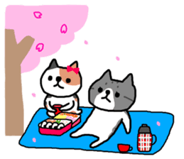 A cat sticker has been released 2 sticker #15945502