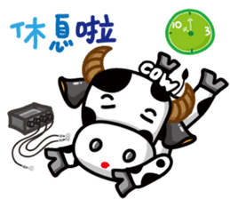 May's cow sticker #15945884