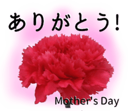A message of the Mother's Day! Part2 sticker #15947571