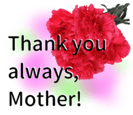 A message of the Mother's Day! Part2 sticker #15947574