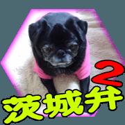 สติ๊กเกอร์ไลน์ Black pug doratan 6