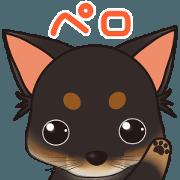 สติ๊กเกอร์ไลน์ It moves!Pelo and pet friends Sticker