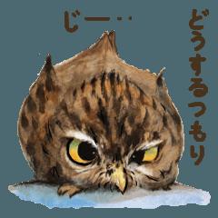 สติ๊กเกอร์ไลน์ Kura's owl stickers