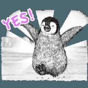 สติ๊กเกอร์ไลน์ Co Penguin Animated 2