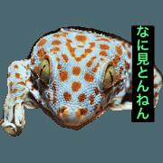 สติ๊กเกอร์ไลน์ sukazoku