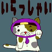 สติ๊กเกอร์ไลน์ Cute ninja cat shadow