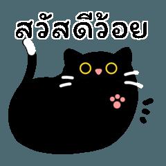 หยิ๋นแมวดำขี้เหวี่ยง