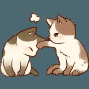 สติ๊กเกอร์ไลน์ Kitten daily animation sticker