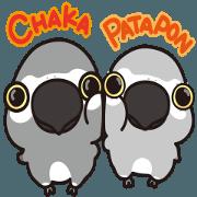 สติ๊กเกอร์ไลน์ CHAKA & PATAPON(Psittacus erithacus)
