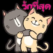 สติ๊กเกอร์ไลน์ บูกี้ แทมี่: คู่รักแมวป่วน