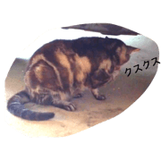 สติ๊กเกอร์ไลน์ Cat at the grandfather's house
