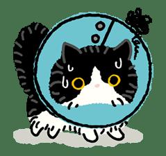 Kutsushita Nyanko: Lots of Love sticker #28777