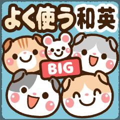BIG よく使う・和&英 [たれ耳ニャンコ]