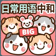 BIG よく使う・中&和 [たれ耳ニャンコ]