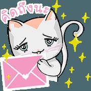 สติ๊กเกอร์ไลน์ CHABBY cat live (TH)
