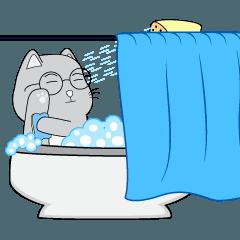 Cute Chubby Cat : Animated