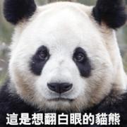 สติ๊กเกอร์ไลน์ Go Absolutely Wild! Funny Animal Memes