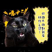 สติ๊กเกอร์ไลน์ DIY message with Baiji (Photo images)