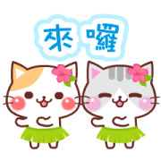 สติ๊กเกอร์ไลน์ Animated Cats (Summer)