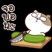 สติ๊กเกอร์ไลน์ แมวเต้าหู้ : คำฮิตติดปาก