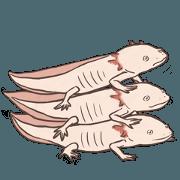 สติ๊กเกอร์ไลน์ Bay-chan the axolotl