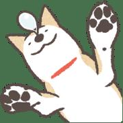 สติ๊กเกอร์ไลน์ Shiba Inu (Shiba-Dog) BIG Stickers