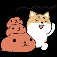 สติ๊กเกอร์ไลน์ Shibasays × Kapibarasan Crossover