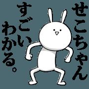 สติ๊กเกอร์ไลน์ [sekochan] name sticker