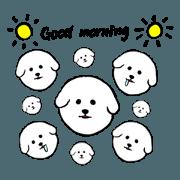 สติ๊กเกอร์ไลน์ bichon frise dogs(fluffy dogs)2