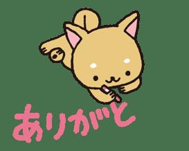 Animated iiwaken sticker #3630983