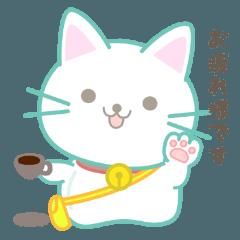 猫マロ-マシュマロのような猫-