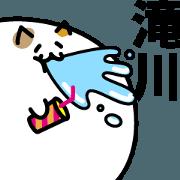 สติ๊กเกอร์ไลน์ MeatBallCat LastNAME Sticker TAKIGAWA!