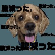 สติ๊กเกอร์ไลน์ Oyakata_20180920011331