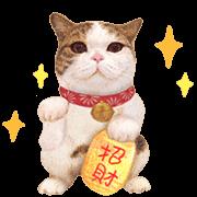สติ๊กเกอร์ไลน์ Kingdom of Tigers: Animated Stickers