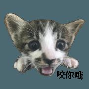 สติ๊กเกอร์ไลน์ hui chun_20181115230517