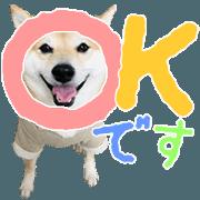 สติ๊กเกอร์ไลน์ Keigo Stamp -Shibainu Sabu-chan-